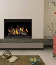 Fireplace Idea Book On Pinterest Gas Fireplaces Modern Fireplaces And Napoleon