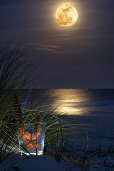 500px / Foto Wayfarer em uma lua do lobo   Hilton Head Island por Jim Crotty