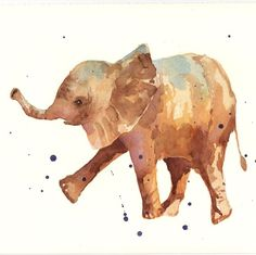 Alison Fennel: She paints many animals such as: foxes, flamingos,owls, giraffes, and many others.She likes panting many wild amimals and she also includes house dogs in her work.