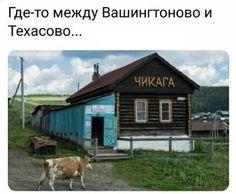 Stupid Memes, Man Humor, Jokes, Lol, Architecture, House Styles, Funny, Animals, Image