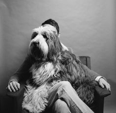 Dog - portrait with owner