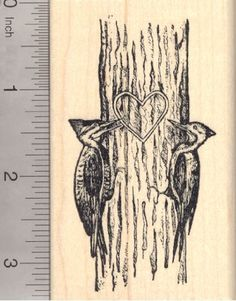 Valentines Day Woodpecker Pair Rubber Stamp Male and Female Birds with Heart -- Continue to the product at the image link.