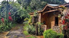 From @casacucubano How you know you've arrived! Our Greeting House. #junglecabinpr #lasmarias #puertorico Experience the beauty follow us. #puertorico #puertoricodoesitbetter #daytripperspr #puertoricogram #puertoricobound #puertoricolife #puertoricolohacemejor #puertoricoeats #puertoricovacation #prvacationclub #instagood #follow #photooftheday #beautiful #happy #love #picoftheday #summer #fun