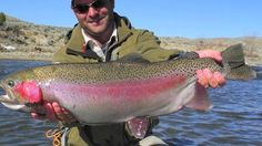 Fly Fishing North Platte River in Wyoming | Giant Wyoming Rainbow Trout on Vimeo