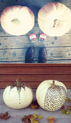 The Thumbtack Pumpkin and 36 other cute ways to decorate pumpkins without carving!