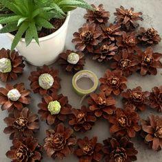 Tobozvirág koszorú — Dekorella