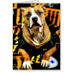 Pitbull Rescue Dog Football Fanatic