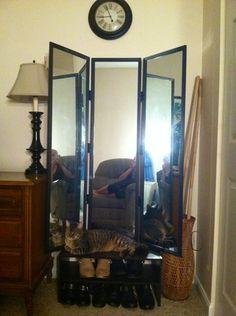 My Successful Pinterest Diy Three Way Mirror
