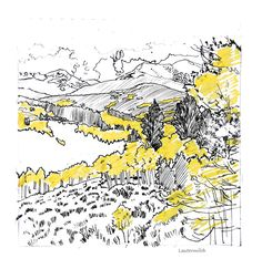 Yellow Aspens Colorado Mountains Drawing  - Yellow Aspens Colorado Mountains Fine Art Print