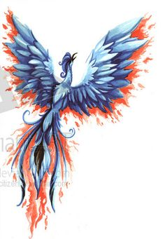 A beautiful feminine take on a phoenix tattoo! Maybe with more purples incorporated?