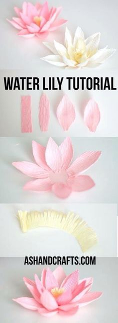 DIY Paper Flowers - Crepe Paper Water Lily - How To Make A Paper Flower - Large Wedding Backdrop for Wall Decor - Easy Tissue Paper Flower Tutorial for Kids - Giant Projects for Photo Backdrops - Dais Giant Paper Flowers, Felt Flowers, Diy Flowers, Fabric Flowers, Wedding Flowers, Flower Paper, Wedding Bouquets, Paper Flowers How To Make, Paper Wall Flowers Diy