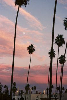 East Side sunset #Los_Angeles, #California http://VIPsAccess.com/luxury-hotels-los-angeles.html #viajarbook