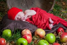 Apple Basket & infant photos