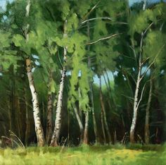 Birches, oil on canvas, 40x40 cm, 2014