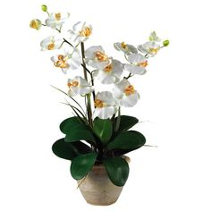 Brimming with natural appeal, this beautiful faux orchid arrangement brings a lovely pop of color to your decor. Product: Faux floral...