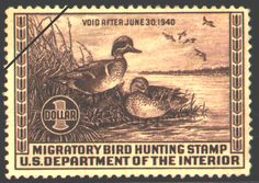 1939 Federal Duck Stamp (1939-1940)  Green-winged Teal  by Lynn B. Hunt. Pencil drawing of Green-winged Teal by Lynn Bogue Hunt, one of America's foremost wildlife artists. His works were seen in numerous magazines and books. (Deceased)