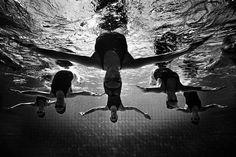 Synchronized swimming by Tomasz Gudzowaty photography
