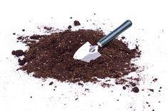 Vamos a ver 10 usos de los posos de café en el jardín que te ayudarán a conocer los beneficios de este material que habitualmente acaba en la basura