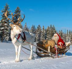 Joulupukki+rekiajelulla+Ritavaarassa+Pellossa+Länsi-Lapissa