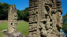 Copán | Viviendo El Tiempo Maya