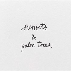Image result for little tree image instagram bio