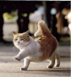 Walking Angry