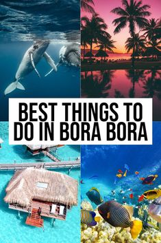 All the best things to do in Bora Bora! While traveling to the French Polynesia, make sure and visit the island of Bora Bora for epic snorkeling, overwater bungalows and so much more! Dream Vacations, Vacation Spots, Romantic Vacations, Tahiti Vacations, Italy Vacation, Romantic Travel, Vacation Ideas, Places To Travel, Travel Destinations