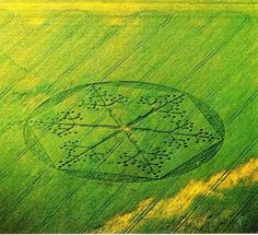 A hexagonal crop circle of unknown provenance.