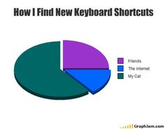How I find new keyboard shortcuts: Friends, The Internet, My Cat