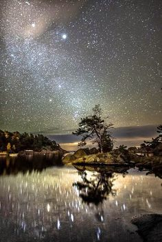 Lluvia de estrellas..
