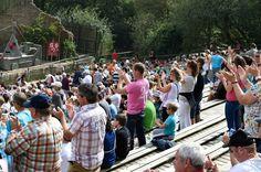 Le Puy du Fou sacré meilleur parc à thème au monde.