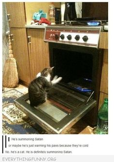 cat in oven summoning satan