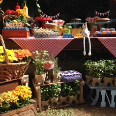 Colorful and cozy PicNic party with cute garden favors Festa de Pic Nic super colorida e como lembrancinha uma plantinha para hosta em casa