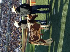 Cowboy Joe is the cutest mascot ever. Wyoming football.