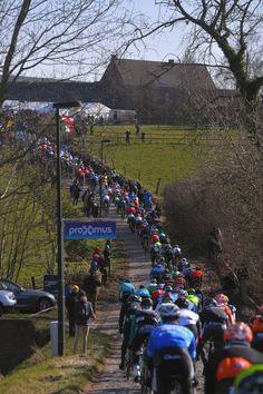 73rd Omloop Het Nieuwsblad 2018 / Men Landscape / Peloton / Gent Ninove / Flanders Classics /