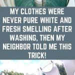 My Clothes Were Never Pure White and Fresh Smelling after Washing. Then my Neighbor Told me This Trick! Pomegranate Oil, List Of Essential Oils, Oil For Dry Skin, Loose Skin, Best Oils, Sagging Skin, Skin Elasticity, Skin Tightening, Pure White