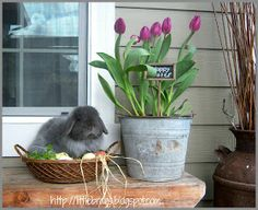Rustic Easter porch Decor