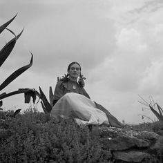 """[Frida Kahlo (Senora Diego Rivera) seated next to an agave plant, during a photo shoot for Vogue magazine, """"Senoras of Mexico""""] Frida Kahlo Exhibit, Vancouver, Romance Comics, Carnaby Street, Agave Plant, Mexican Artists, Star Wars, Victorian Women, Slums"""