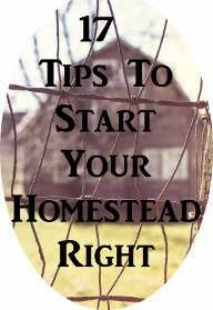 17 Tips To Start Your Homestead Right ~ Just Plain Marie