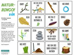 Naturbingo – morsom utendøraktivitet for familien! Nature Activities, Preschool Activities, Bingo, Autumn Art, Grape Vines, Education, Fester, Geography, Crowns