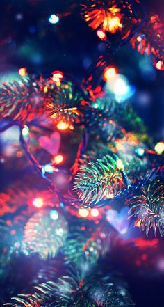 Christmas tree decorated with garlands, close-up , Christmas Wallpapers Tumblr, Merry Christmas Wallpaper, Holiday Wallpaper, Winter Wallpaper, Christmas Mood, Christmas Lights, Xmas, Wallpaper Keren, Wallpaper Backgrounds