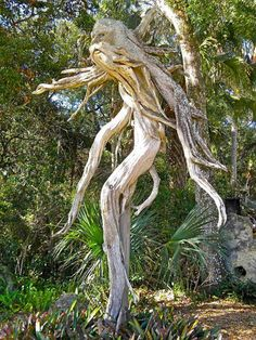 Spirit of the tree. I love this for an outdoor garden! Weird Trees, Driftwood Sculpture, Abstract Sculpture, Bronze Sculpture, Sculpture Art, Magical Tree, Tree People, Tree Faces, Tree Carving
