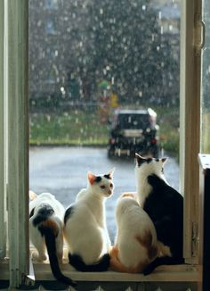 Rain, rain, go away, we want to go out and play