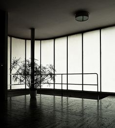 Tugendhat House in Brno by Ludwig Mies van der Rohe. Photo by Samuel Ludwig.