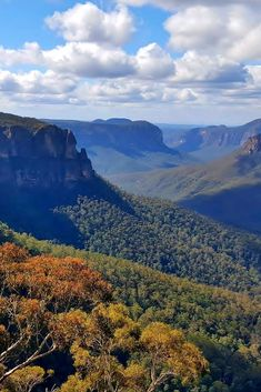 The Blue Mountains are a must see on any trip to Australia. Take a look at this guide to help you plan your visit to the stunning Blue Mountains. The Blue Mountains are a Australia Tourism, Sydney Australia, Australia Trip, Australia Photos, Blue Mountains Australia, Australia Landscape, Ways To Travel, Vacation Spots, Beautiful Landscapes