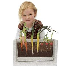 Root-Vue Farm gives kids X-ray vision to watch seeds grow into carrots, onions and radishes. A garden laboratory is designed to make it easy to watch the roots form and spread out. Includes durable growing box with viewing window, seeds, soil mix, labels and a colorful instruction booklet. Multiple Award Winner, including Dr. Toy and Oppenheim Gold. Ages 4+. $35
