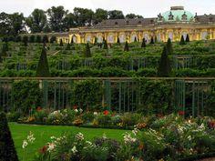 Sanssouci, Potsdam, Germany #gardens #gardentourism