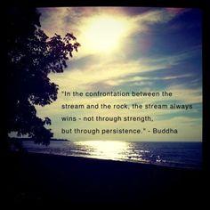 buddhist proverb | Tumblr