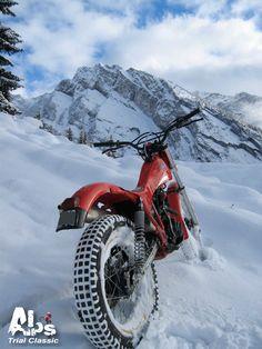 Honda Cub, Trial Bike, Bike Style, Trail Riding, Sport Bikes, Cool Bikes, Scooters, Alps, Trials