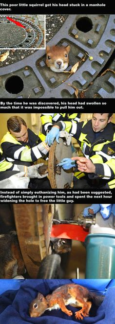 Firefighters being awesome…